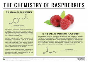 The-Chemistry-of-Raspberries