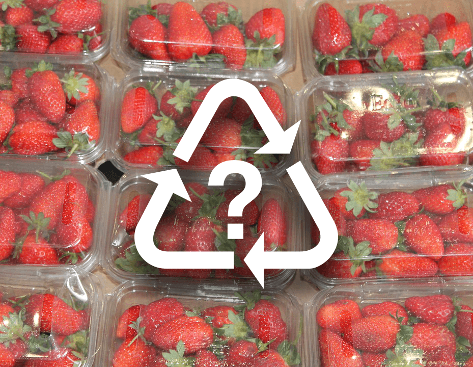 Types of Plastic Food Packaging and Safety: A Close-Up Look